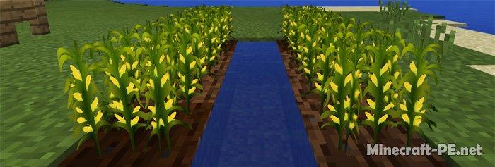 Текстурпак Corn Economy [1.2] [1.1]