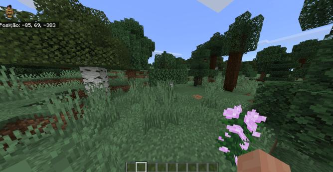 Мод yFantasy 1.14 (Биомы, предметы, растения)