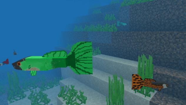 Мод Guppy Fish 1.14 (Обитатели океанов)