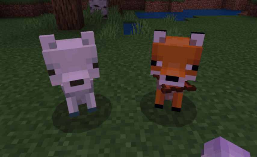 Мод Tameable Foxes 1.16 (Милая лисичка)